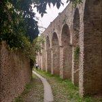 Photo of Castle of Conegliano