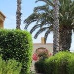 Fotografia de Pestana Palm Gardens
