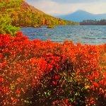 Bilde fra Wingate by Wyndham Lake George