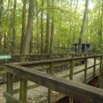 Foto de Cypress Grove Nature Park