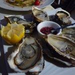 très belles huîtres