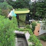 Photo of Ghibli Museum
