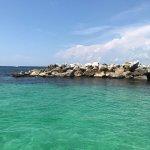 Shell Island Panama City FL