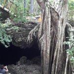 Bilde fra Morgan's Cave