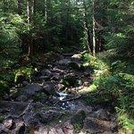 Lonesome Lake Trail (very rocky)