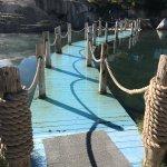 Foto de The Springs Resort & Spa