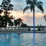 Photo of Blue Heron Beach Resort