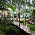 Hush Gardens