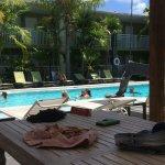 Best Western Hibiscus Motel Foto