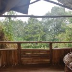 Photo of Broadbill Forest Camp