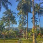 Photo of Mascot Beach Resort