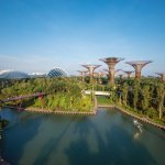 Visit Gardens by the Bay which is a mere 15-mins walk or 1-train stop away from the hotel