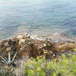 Il mare dalla terrazza