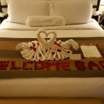 Rose petal note and swan made from towels