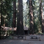 Le Visitor Center au milieu des redwoods
