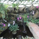 Photo of Bali Orchid Garden