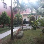 Garden in the central of hotel building