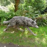 The wolf that I absoultly loved but my minature schnauzer had such a strong reaction to.
