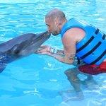 Photo de Delphinus Punta Cancun