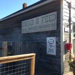 Knead & Feed