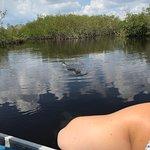 Photo de Capt Mitch's - Everglades Private Airboat Tours