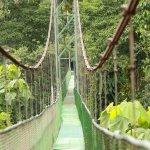 The longest suspension bridge in Costa rica.
