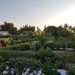 Φωτογραφία: Almyra Hotel Village