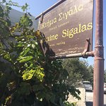 Photo of Domaine Sigalas