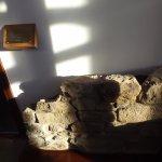 Roman Wall in lobby