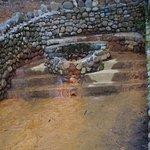 hot spring at Longmire