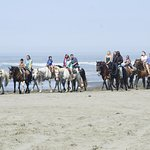 The hotel is just steps away from North Beach, which lets you park and rent a horse for a ride.