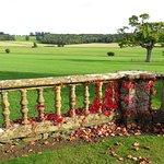 Sherborne Castle - grounds