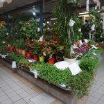Benicarlo Central Market