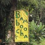 Foto de Bamboocha