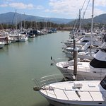 Some of the marina views