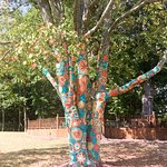 The crochet covered tree.