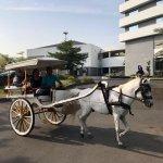 Riding delman around the hotel area
