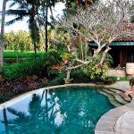 Villa Orchid Bali Bild
