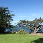 Photo of Pacific Grove Oceanview Boulevard