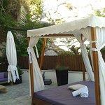 Suite 117 terrace