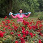 red roses in abundance