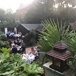 Blue Orchid Garden