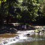 Photo of Black River Gorges National Park