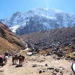 Photo of Inka Trail Expedition Peru