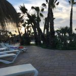 Photo of Marjal Costa Blanca Camping Resort