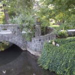 The lovely stream and stone bridges at the grounds adjacent to Columbia Cliff Villas Hotel.
