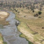 Billede af Tarangire Safari Lodge