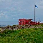Machrihanish Seabird & Wildlife Observatory