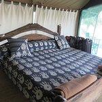 Foto de Tarangire Safari Lodge