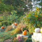 Great seasonal landscaping and decorations
